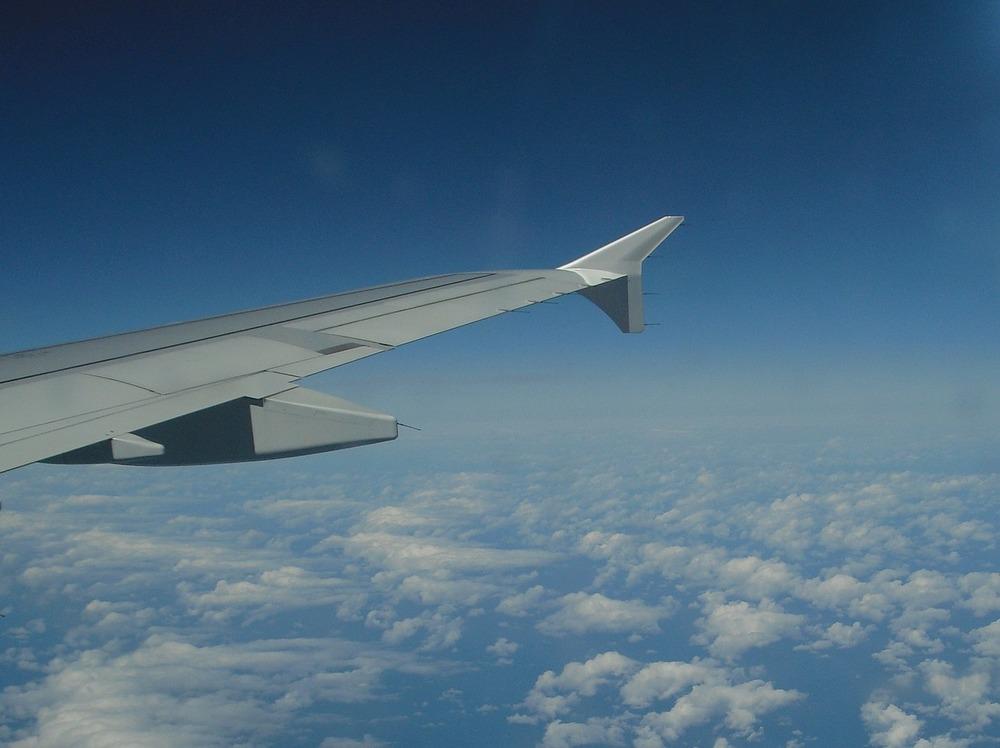 wing-267440_1280.jpg