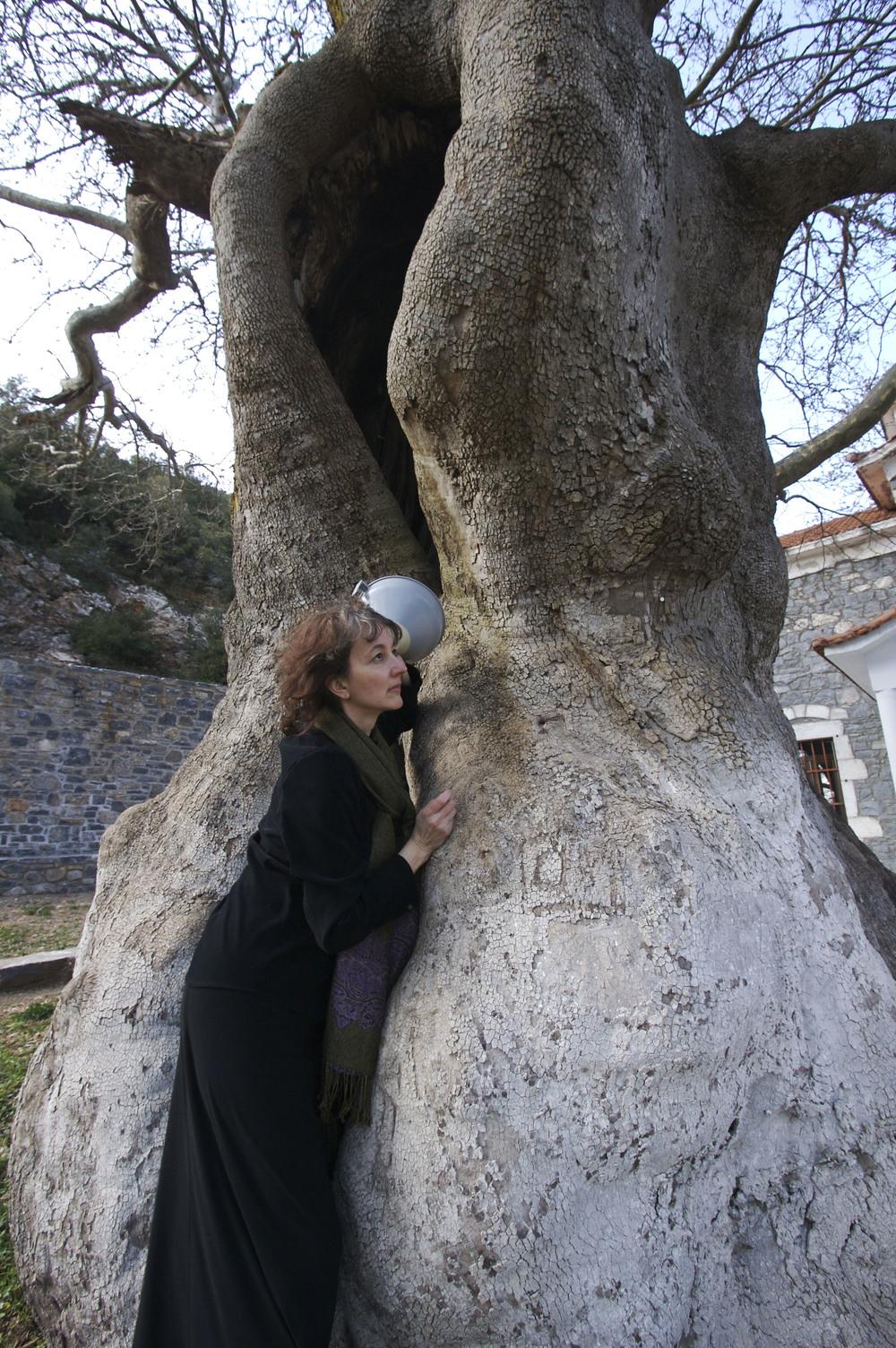 8.Woman-Tree.jpg