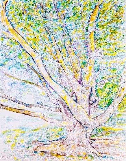 Aimee Hertog, Tree