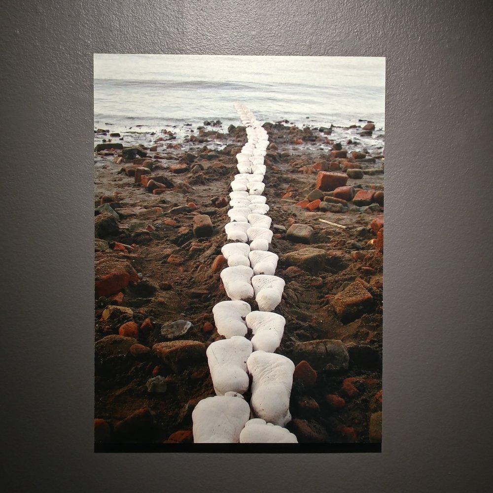 Footpaths , Joan Harmon