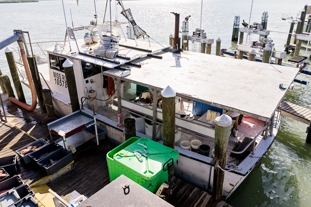 The Miss Ruby moored at Don's Dock. The crew arrived early on a Friday to offload their catch. All fishing crews that supply seafood to Wild Seafood are part of Gulf Wild, a non-profit organization that sets the standard for fishing responsibly in the Gulf of Mexico.