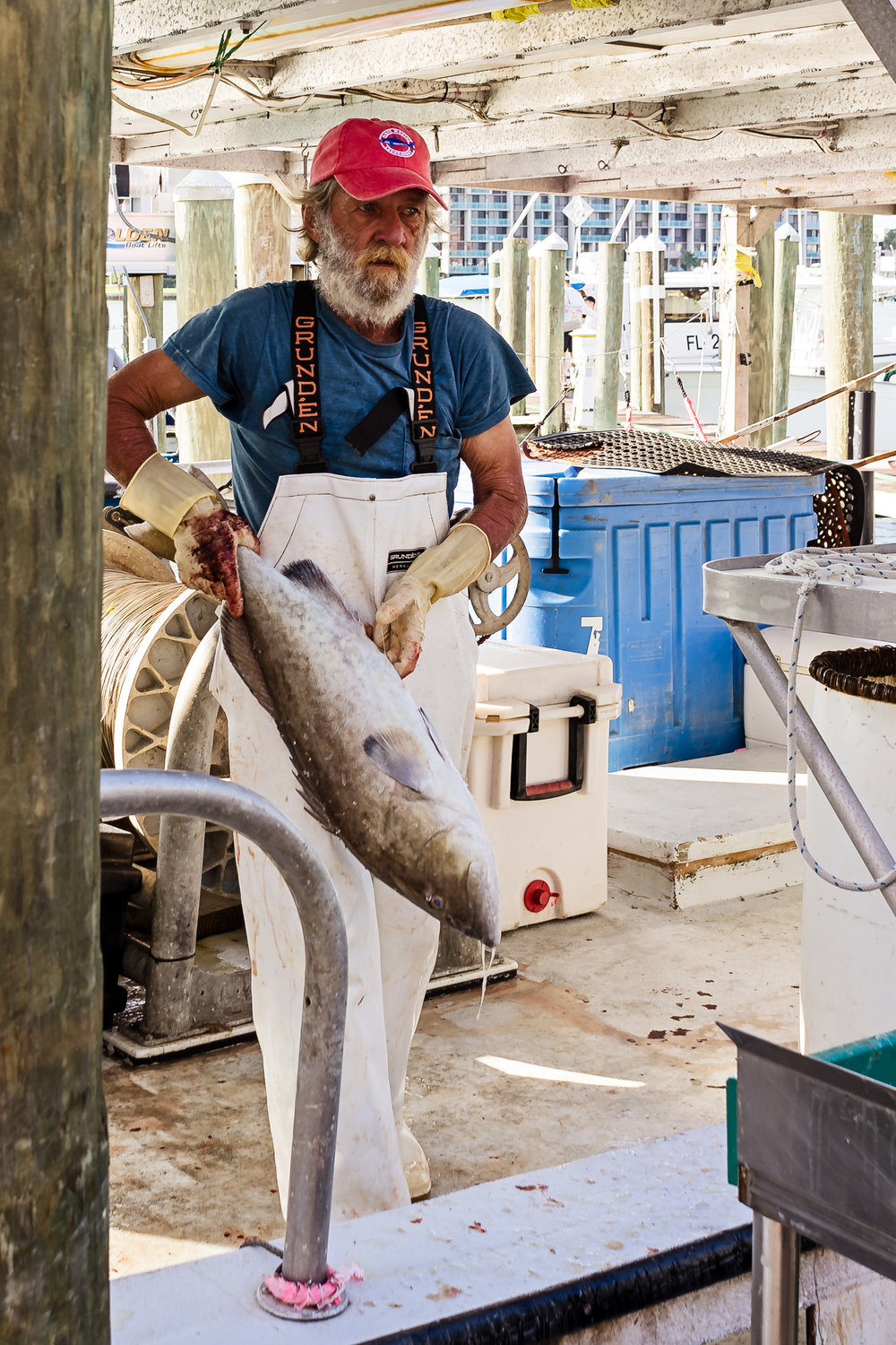 "A deckhand offloading the catch at Don's Dock. Each fisherman that signs a contract with Gulf Wild agrees to a strict set of ""Conservation Covenants""that go beyond federal regulations. Participating in a catch share program and having a camera on-board are just two of these requirements. The catch share program provides incentives in support of responsible harvesting of fish. They also must submit to random audit testing to ensure compliance."