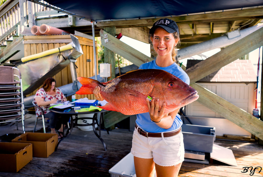 Erin Grebenev holding up a mutton snapper.
