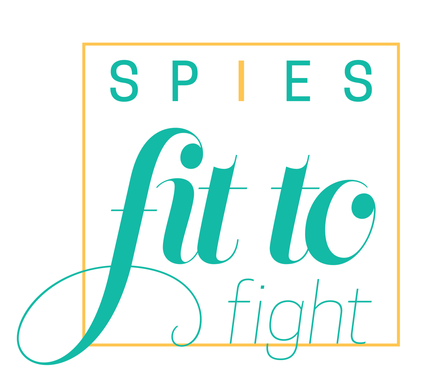 why you need to set goals and how to be proud of your spiesfittofight