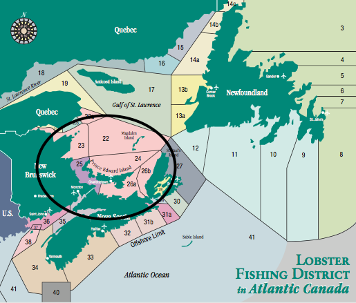 Lobsters that are banded with the  Pin Code #1285  come from LFA's 24, 25 and 26A (Lobster Fishing Area). The Spring season runs for two months starting May 1 and the Fall season in LFA 25 starts August 9th and runs to October 10th.