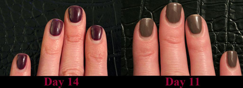 Sally Hansen Salon Pro Gel Polish - Product Review — Jamie Hess