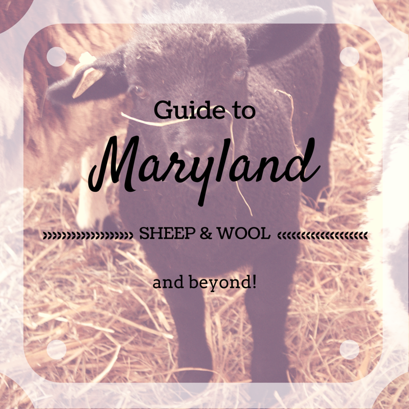 Guide to Maryland Sheep and Wool Festival