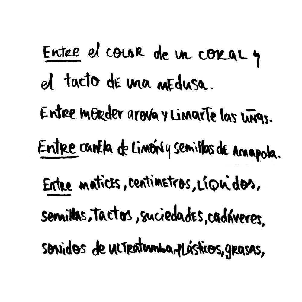 conmuchogusto2.jpg