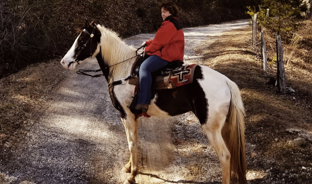Enjoy horse back riding through miles of beautiful trails.