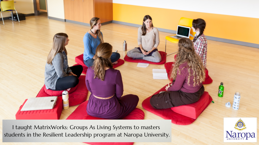 MatrixWorks: Groups As Living Systems at Naropa