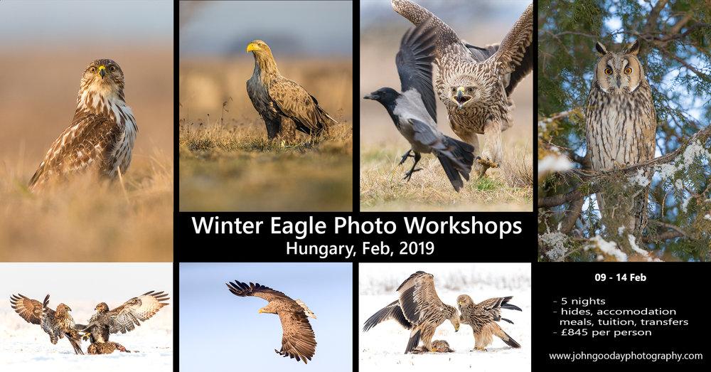 Eagle workshop poster 2019.jpg