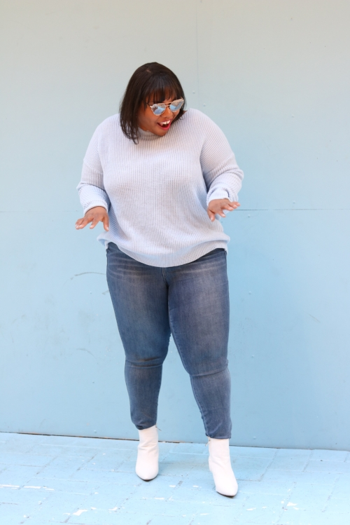 Lane Bryant Denim