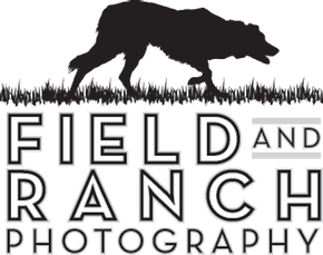Field and Ranch Photography provide photography services for Picture's with Santa days. They may have the best Santa in DFW...but we might just be biased.   Click here to visit their website.