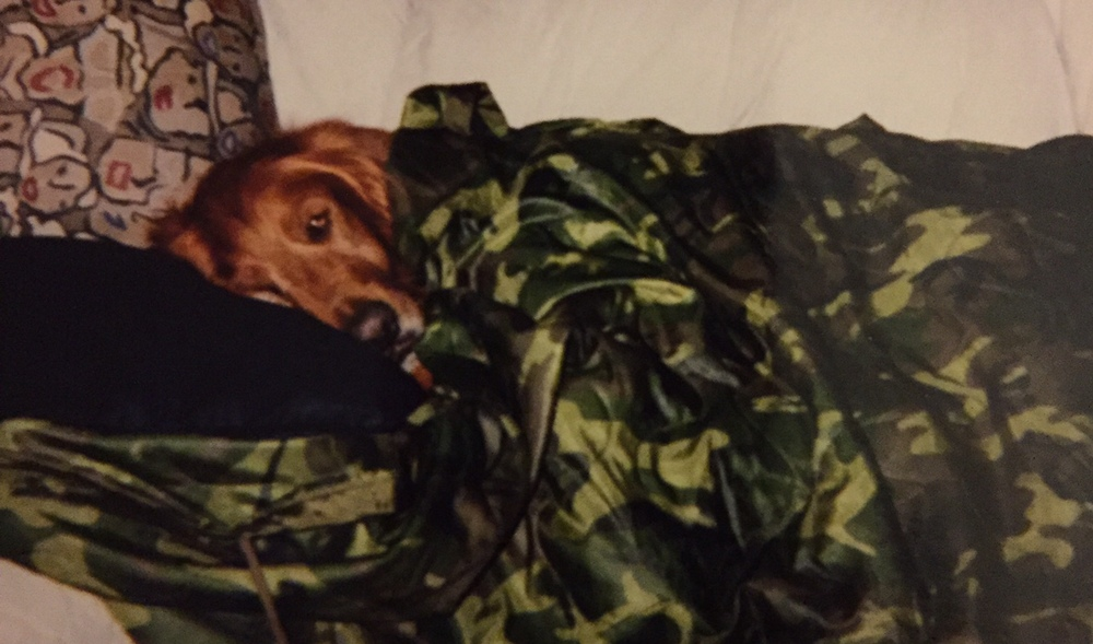 Zack - The First GRRNT Golden - 1996