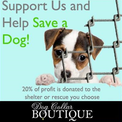Shop Dog Collar Boutique And Save A Dog. 20% of profits is donated to Golden Retriever Rescue of North Texas. Click here to visit their website.