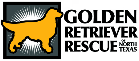 Golden Retriever Rescue of North Texas
