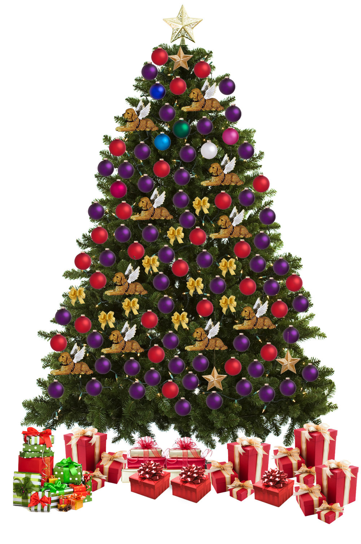 tree 2018 12-28-2018.jpg