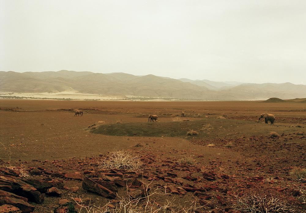 namibia-web-6.jpg