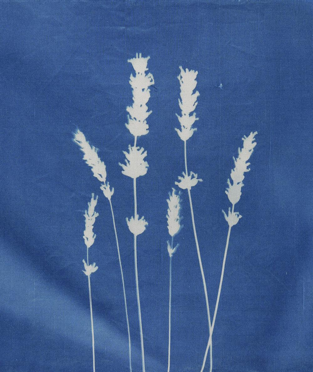 Provençal Lavender on silk