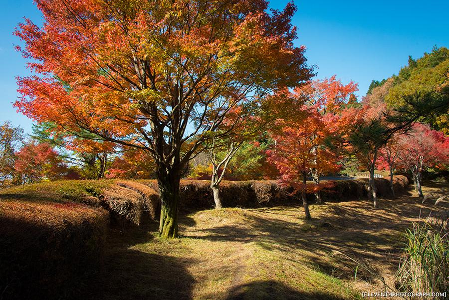 InJapan2014_117.jpg
