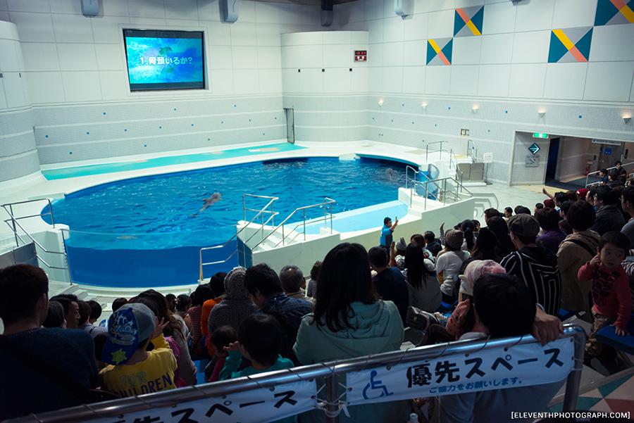InJapan2014_233.jpg