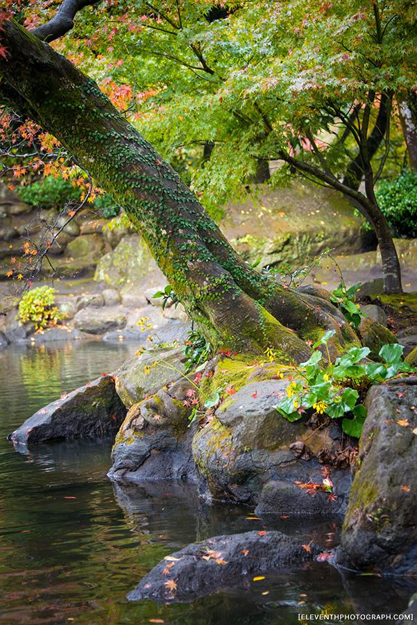InJapan2014_271.jpg