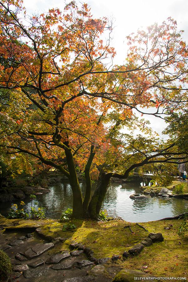 InJapan2014_276.jpg