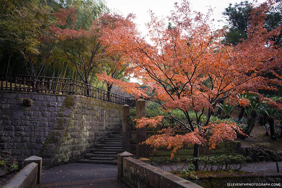 InJapan2014_284.jpg