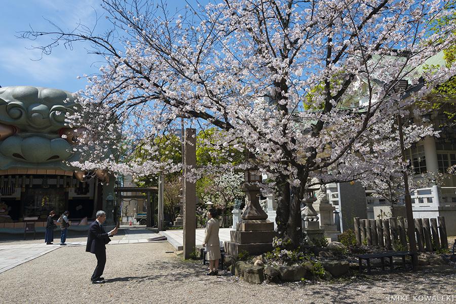 Japan_Osak&Tokyo_MK_010.jpg