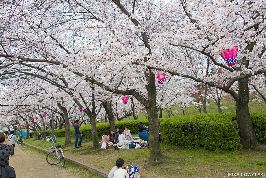 Japan_Osak&Tokyo_MK_107.jpg
