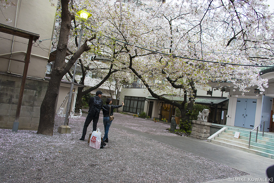 Japan_Osak&Tokyo_MK_114.jpg