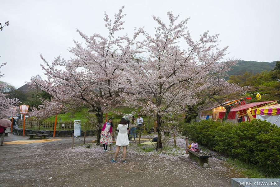 Japan_Osak&Tokyo_MK_182.jpg
