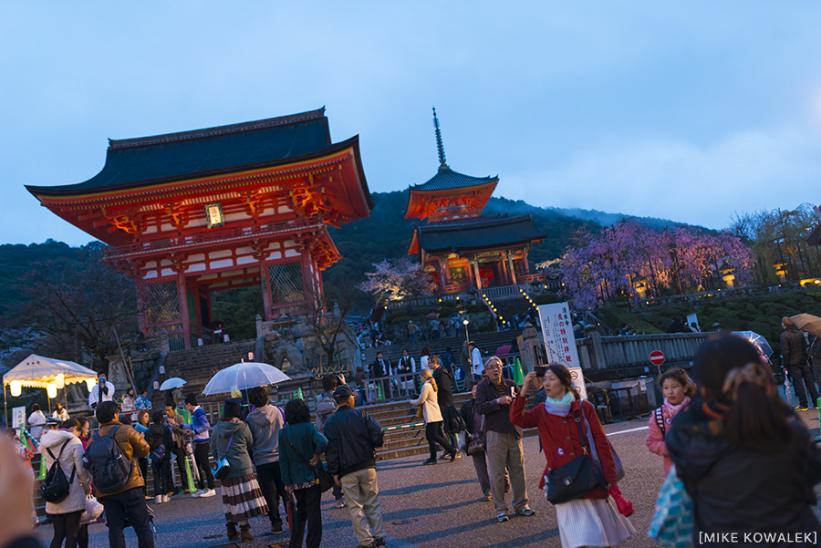 Japan_Osak&Tokyo_MK_207.jpg