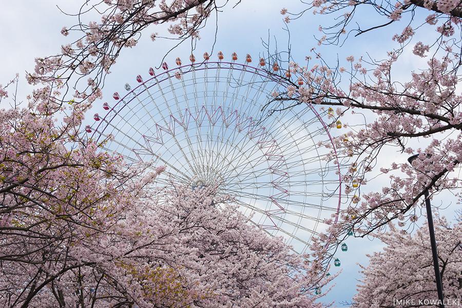Japan_Osak&Tokyo_MK_112.jpg