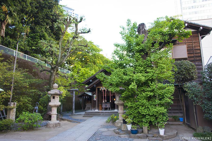 Japan_Tokyo_May2015_014.jpg