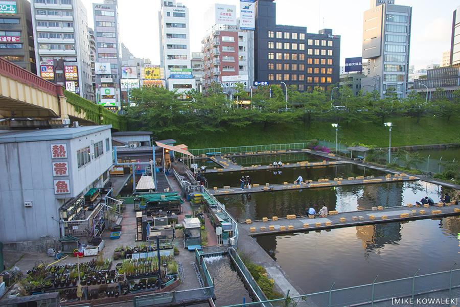 Japan_Tokyo_May2015_016.jpg