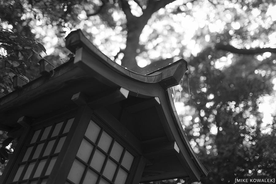Japan_Tokyo_May2015_121.jpg