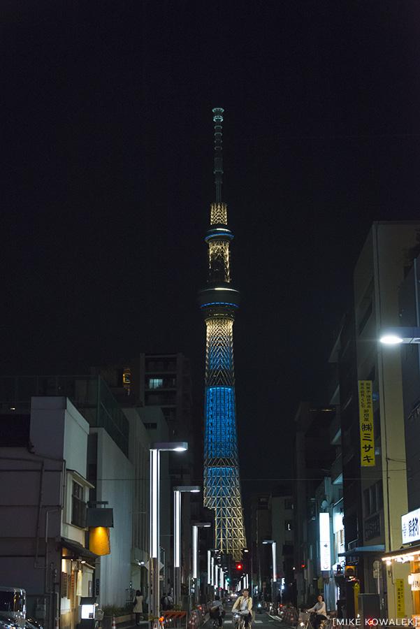 Japan_Tokyo_May2015_144.jpg