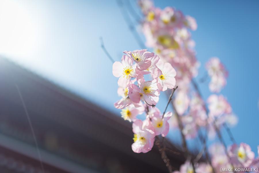 Japan_Tokyo_May2015_165.jpg