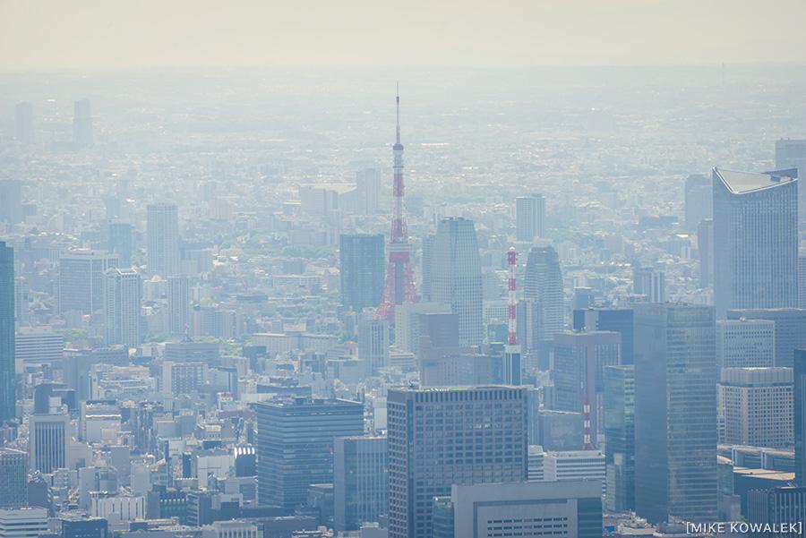Japan_Tokyo_May2015_179.jpg
