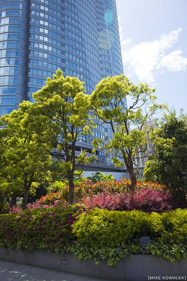 Japan_Tokyo_May2015_193.jpg