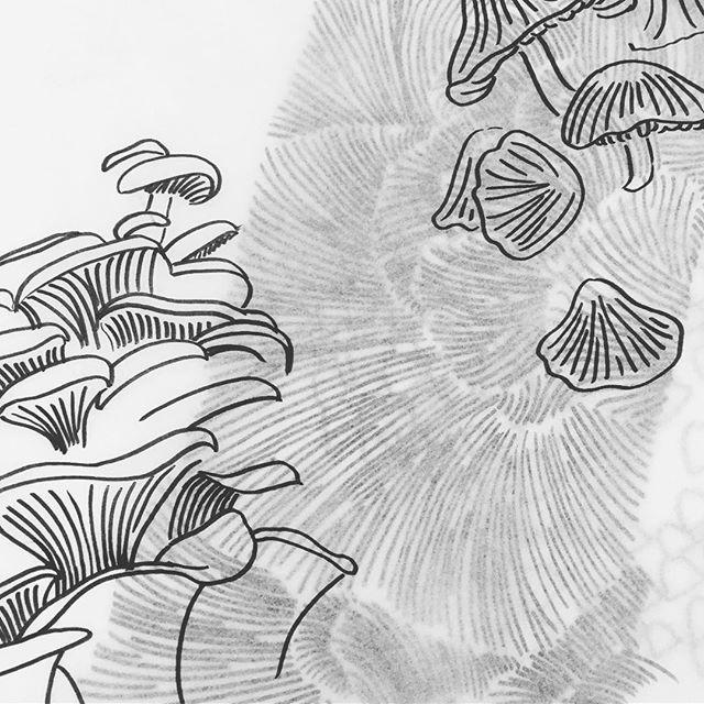 7/52 — Sketch Sketch Sketch  #abmlifeisbeautiful #exploreeverything #finditliveit #folktravel #lifeofadventure #livethelittlethings #letsgosomewhere #livefolk #mytinyatlas #mybeautifulmess #nothingisordinary #pnw #pnwisbest #pnwisbeautiful #pnwonderland #seattle #thehappynow #thatsdarling #upperleftusa #thevisualcollective #visualsoflife #wanderfolk #wandeleurspark #wanderwashington #wip #sketch