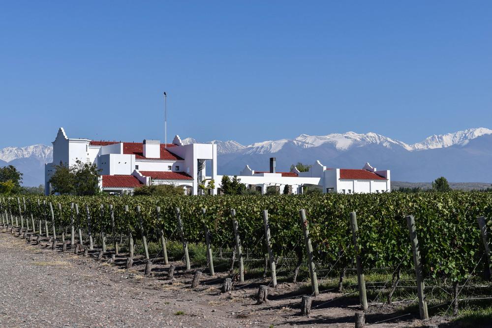 Mendoza II-17.jpg