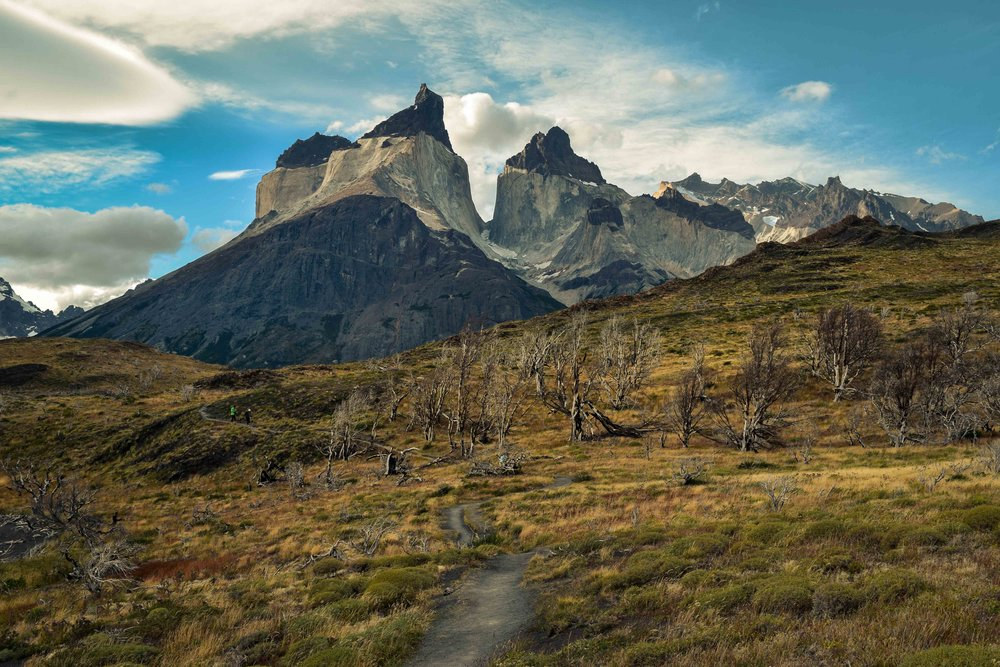 Patagonia new_Curenos - lo res.jpg