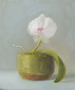 Orchid. Oil on panel. Private collection.
