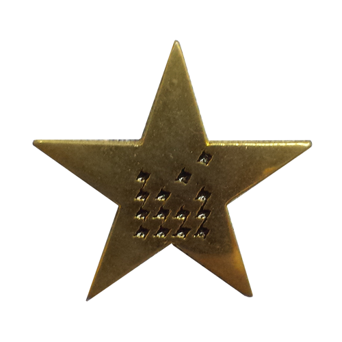 David-Jones-Star-Lapel-Pin.png