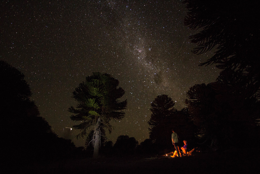The final night camped in an Arucania forest