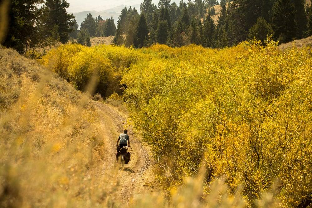 Montana-4.jpg