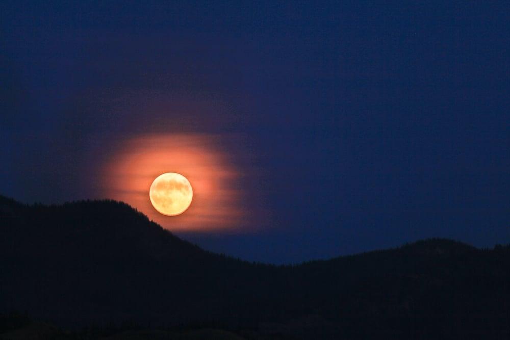 Orange Moon.jpg