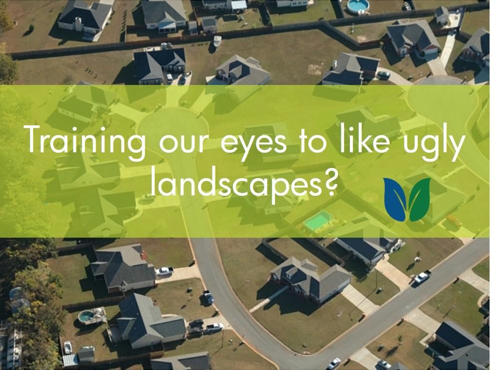 subdivision aerial landscape